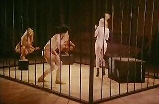 Jamie Gillis, Sam Grady, Chris Anderson in classic sex video